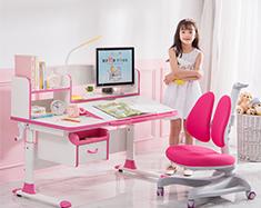 TotGuard study desk 512BW